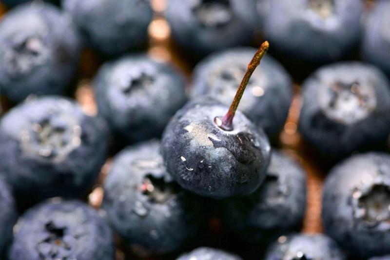 006-Blueberries