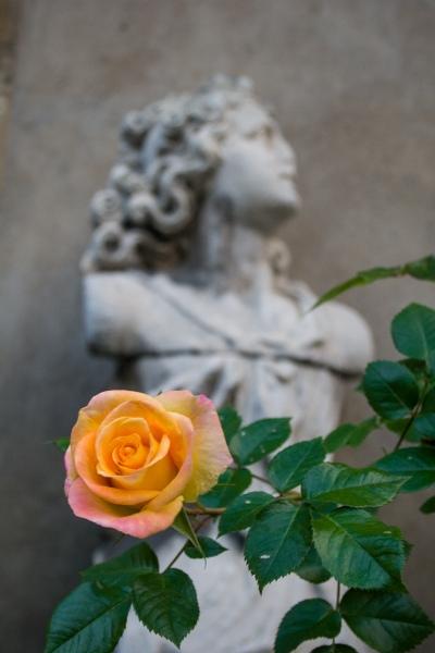 32.Flower-Statue-Dijon