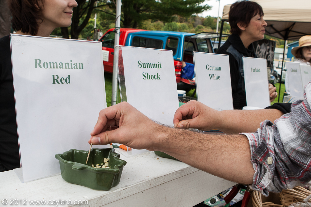 People sample different types of garlic from Summit Naturals Saturday at the Garlic Festival in Saugerties. (Sept. 29, 2012)